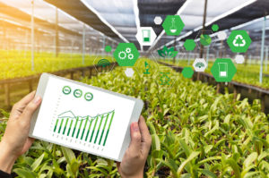 Smart Agriculture/ Agriculture IOT